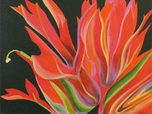 Scarlet-Paintbrush-1-thumb