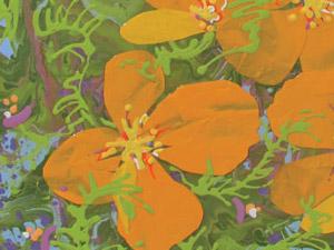 California-Poppies-24x24'-thumb
