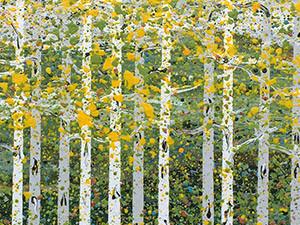 Aspen-Grove-Five_24x24_Seiler16-thumb